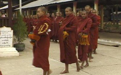 Birman's beat